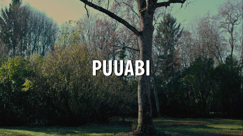 Puuabi